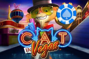Cat in Vegas Gokkast Recensie 2021
