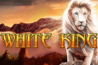 White King Gokkast recensie 2021